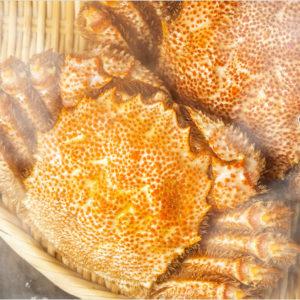 長万部産 黄金毛ガニは、市場に出回らない幻のカニ